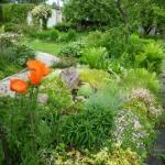 Сад в стиле фьюжн как живопись растениями