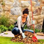Компания Garden Hills объявляет весеннюю уборку